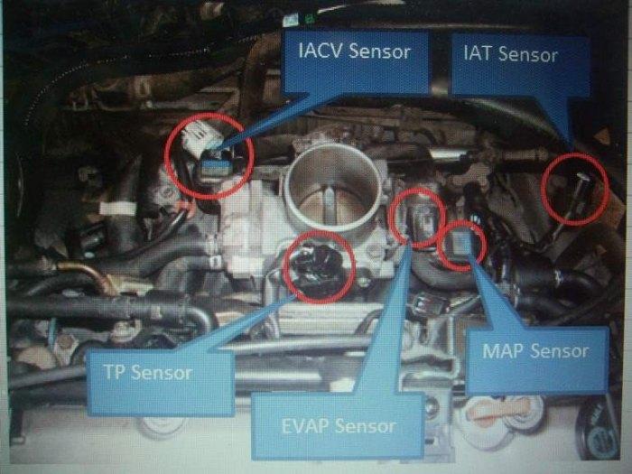 4.ถอดปลั๊กIAT Sensorออกก่อน หลังจากนั้นถอดปลั๊กSensorอีก4ตัวที่เหลือออกตามรูป